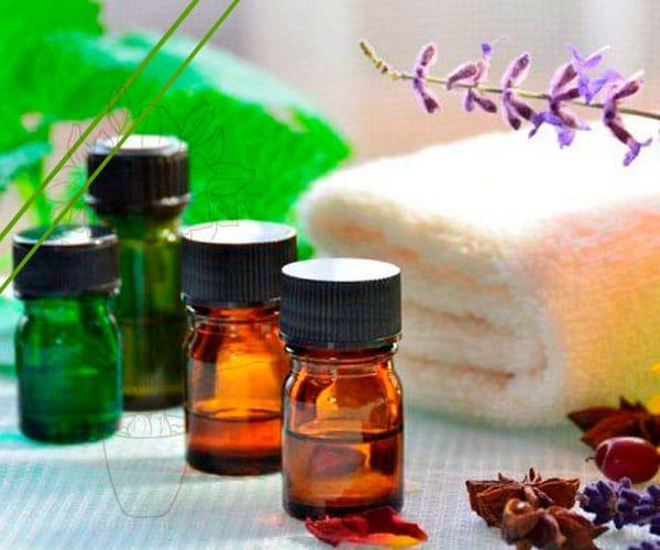 Aceite Esencial de Copaiba VS Aceite esencial de CBD ¿Cuál es Mejor?