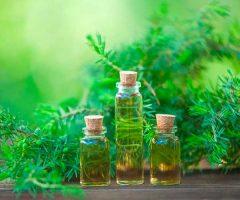 aceite de arbol
