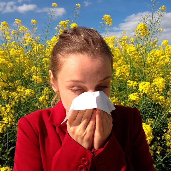 4 Maneras de Prevenir la alergia usando aceites esenciales