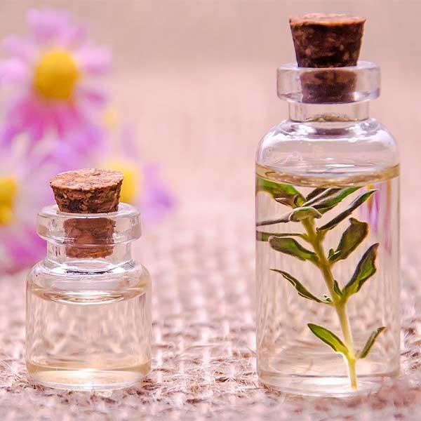 aceites-esenciales-para-la-sinusitis-oregano