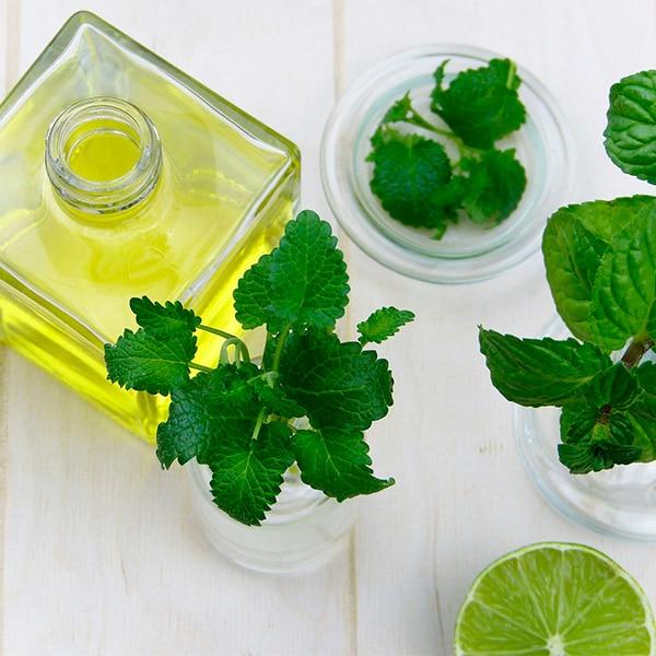 aceites-esenciales-que-puedes-mezclar-con-tu-champu