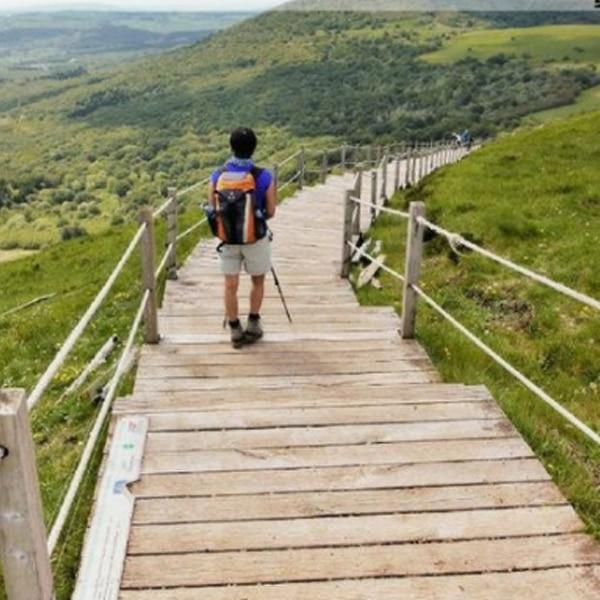 4 Actividades para Hacer en unas Vacaciones Rurales