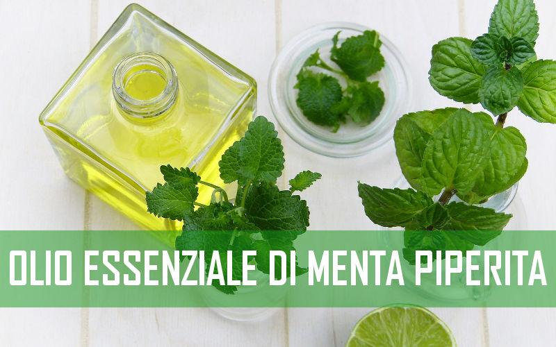 Las mejores propiedades del Aceite esencial de menta