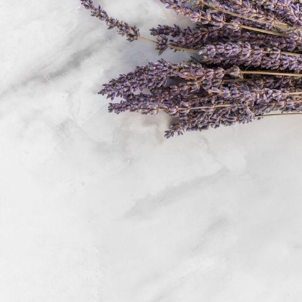 Aceite esencial de lavanda: Propiedades y Usos