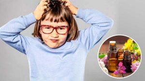 Aceite Esencial contra los piojos de la cabeza
