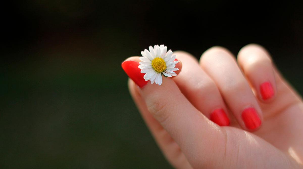 Aceite Esencial de Toronja Para el Cuidado de Uñas